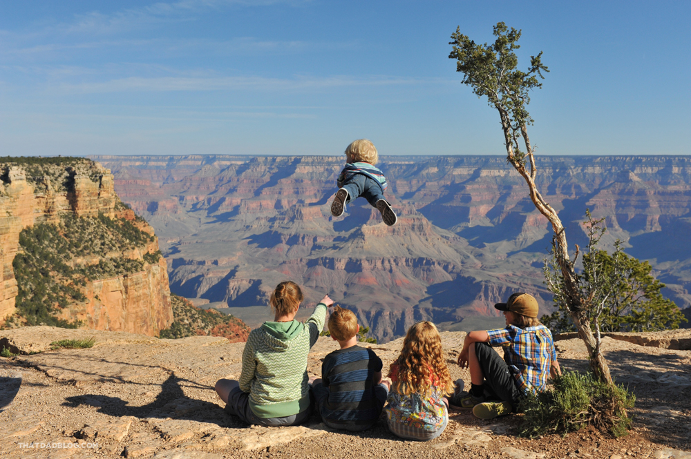Wil-Can-Fly-Grand-Canyon