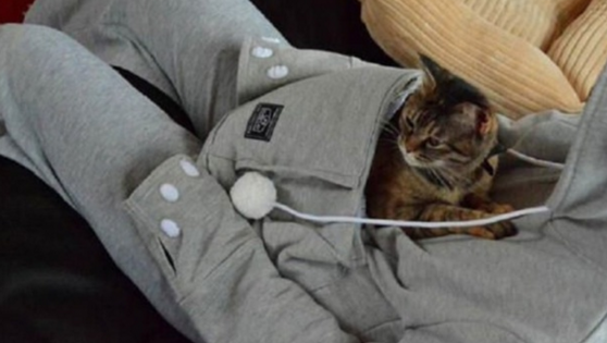Mewgaroo: a hoodie that has a kangaroo pouch for your cat!